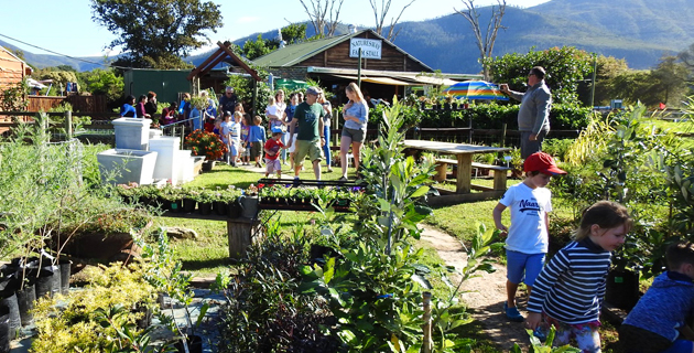 NATURES WAY FARM STALL, NURSERY & ACCOMMODATION
